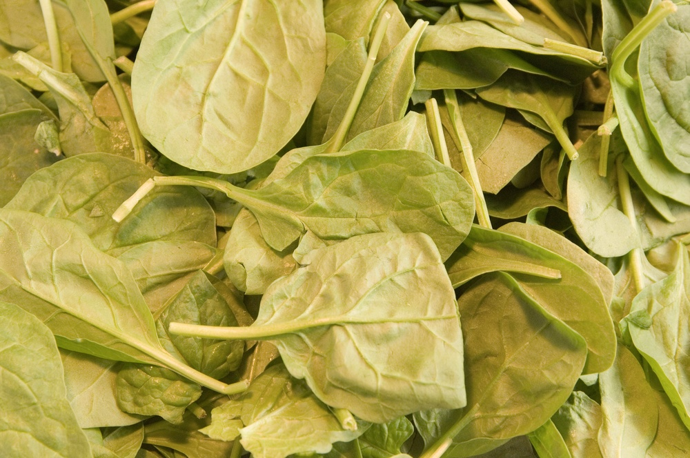 Spinach for fitness