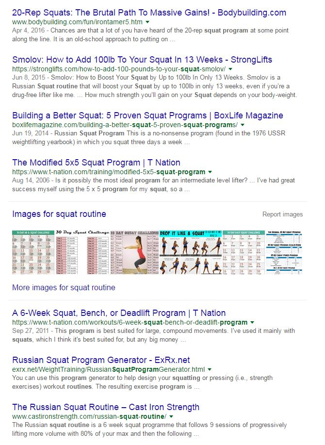 Squat routine google search example