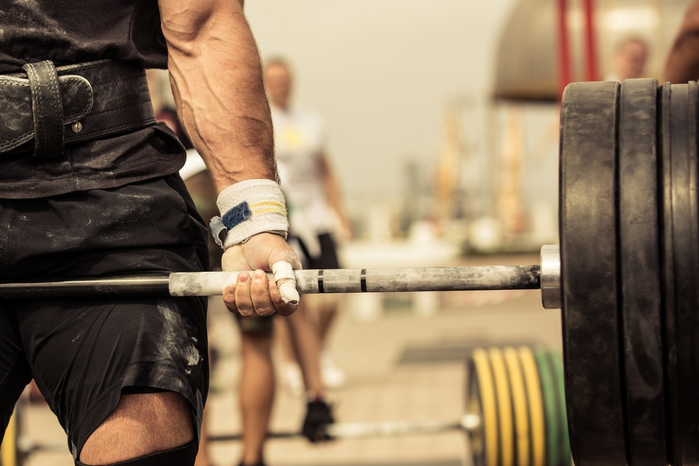 Which barbell to buy from Rogue?