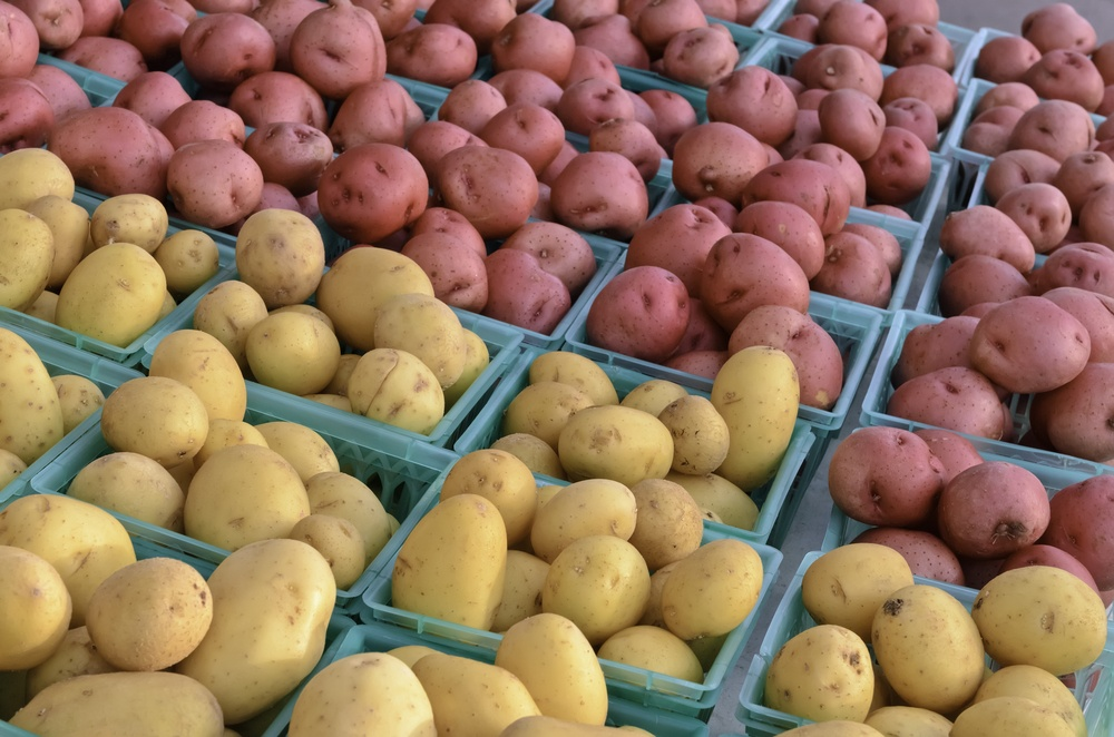 Potatoes for fitness